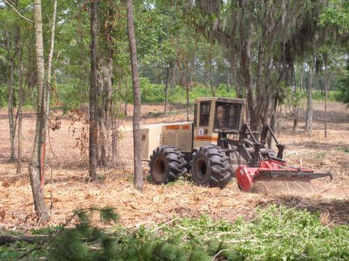 Woodland Mulching