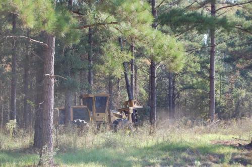 Bragg JD Pre Oct 12 2012 033