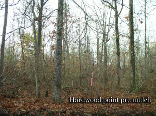 Hardwood point  pre mulch titled