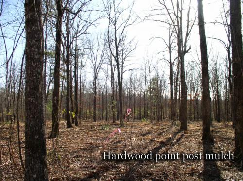 Hardwood point post mulch titled