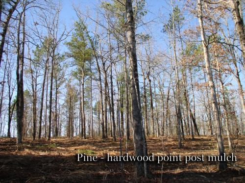 Pine-hardwood point post mulch titled